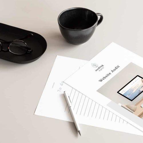 Seedling Digital Website Audit Prework